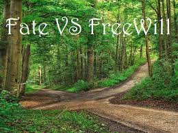 fate vs free will